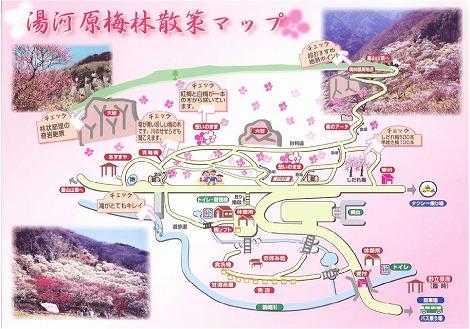 湯河原梅林 梅の宴 散策マップ